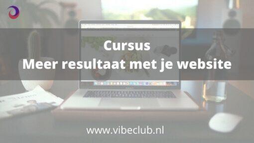 Cursus Meer resultaat met je website succes website check scan